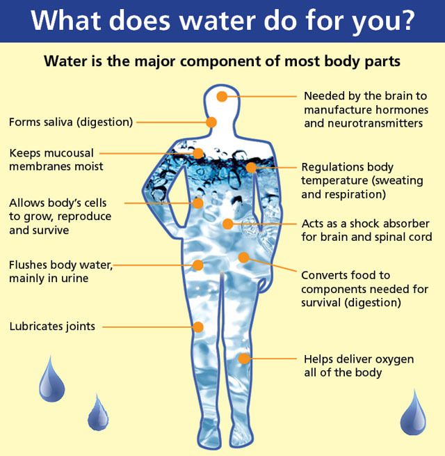 Civilian Exposure - What does water do for you?